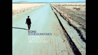 Watch Echo  The Bunnymen Fools Like Us video