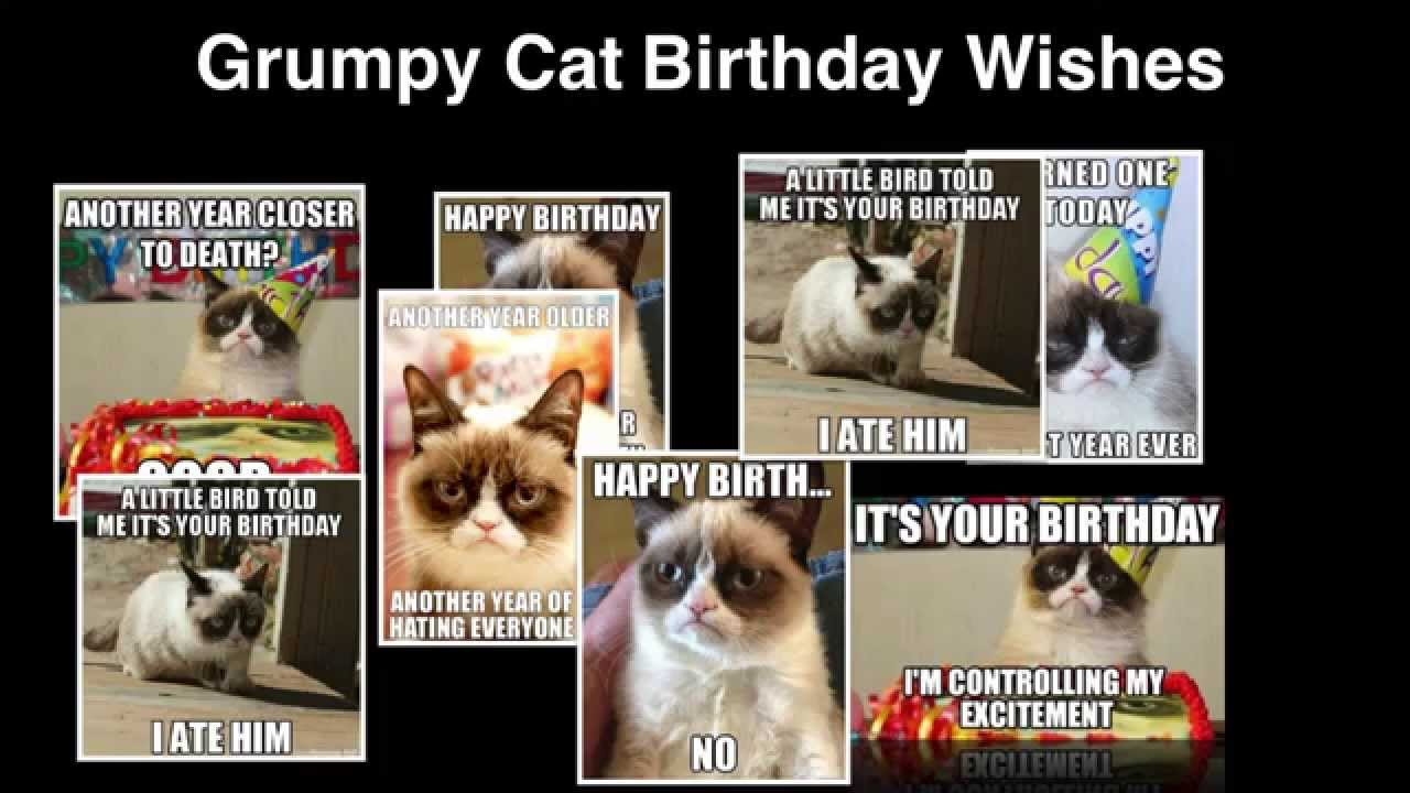 Grumpy Cat Birthday Wishes