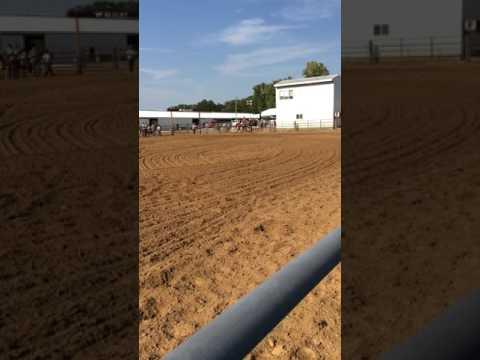 July 23, 2017 - Monroe County Fairgrounds, Waterloo IL Fair - Jocelyn & Annie Barrel Race