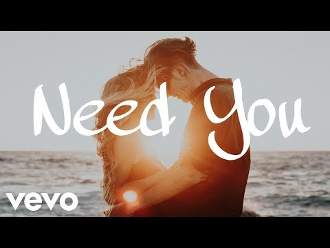 The Chainsmokers, Skrillex ft. Shawn Mendes - Need You (Official Lyrics / Lyric  Video)