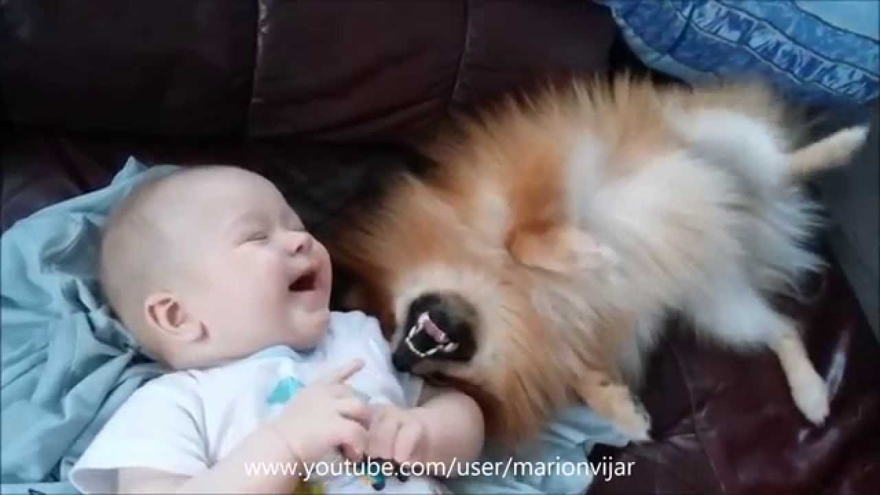 5 Months Old Baby Playing With Pomeranian Puppy Youtube