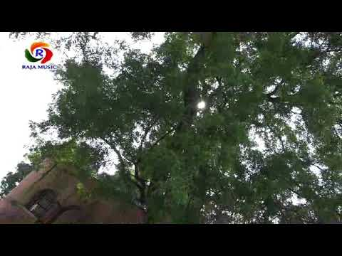 Bhojpuri New Devi Geet-harihar Nimiya Gachhiya;singer-Rambabu Vidyarthi