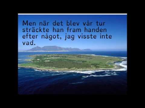 Amnesti - Nadine Gordimer (svenska)