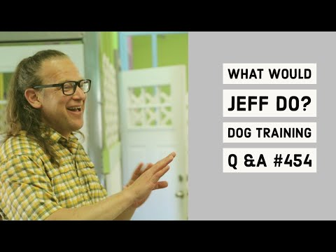 Stop a dog from jumping | Dog bites while playing | What Would Jeff Do? Dog Training Q & A #454