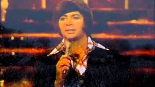 Download Bobby Goldsboro - Honey Remastered MP3 song and Music Video