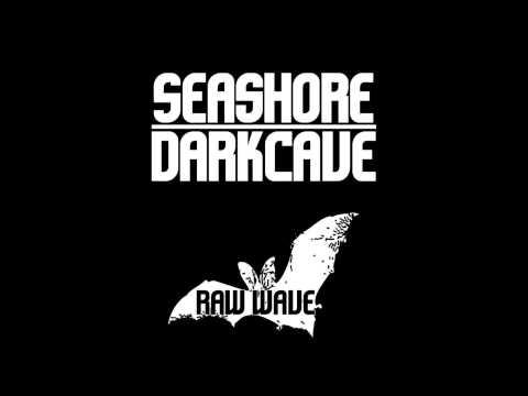 Seashore Darkcave - Myotis Vivesi