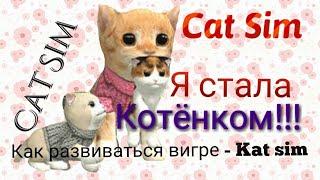 ИГРАЮ В CAT SIM!/Как развиваться в Cat Sim/Nastya Chernichka.