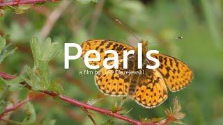 Pearls - a film by Luke Blazejewski