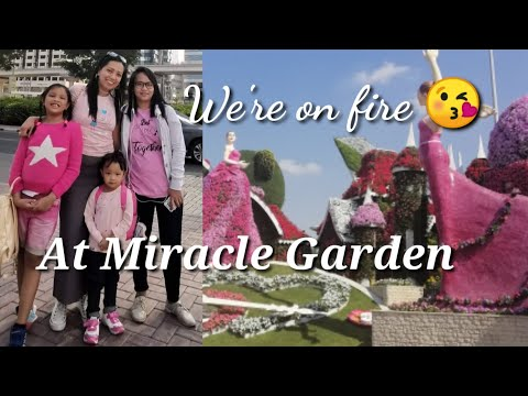 DUBAI MIRACLE GARDEN WITH COOKIES