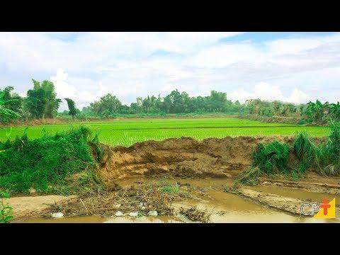 Clique e veja o vídeo Curso Impactos Ambientais na Propriedade Rural - Prevenção e Controle CPT