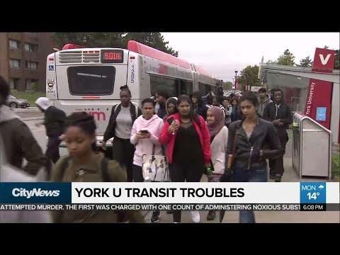 York Region buses no longer allowed on York U campus