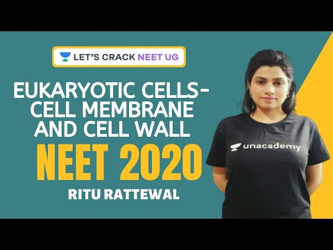 Eukaryotic Cells - Cell Membrane And Cell Wall | Cell - The Unit Of Life | Biology | NEET 2020