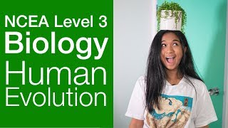 Human Evolution | NCEA Level 3 Biology Strategy Video | StudyTime NZ