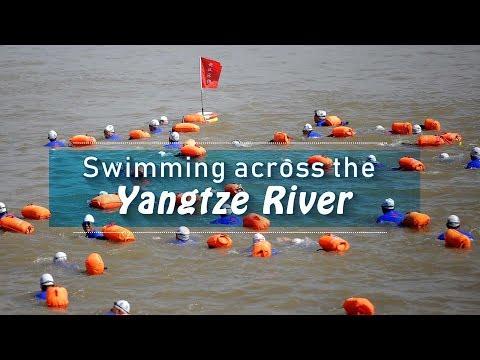 Live: Swimming across the Yangtze River  4500多泳者横渡长江