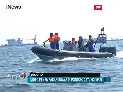 Cerita Anggota Kopaska TNI AL yang Tembak Buaya di Perairan Tanjung Priok - iNews Pagi 18/06