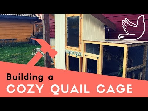 BUILDING A QUAIL CAGE | dream home |