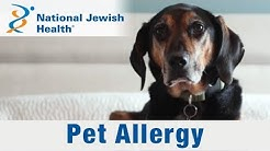 What Are Pet Allergies and How Do You Live with Them?
