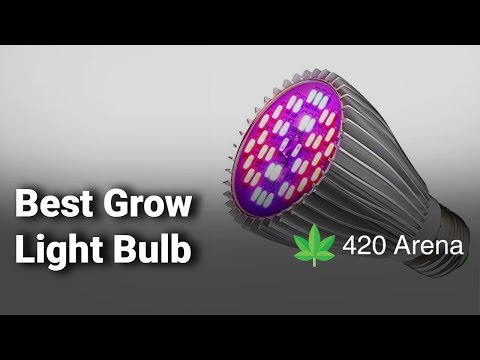 Best Grow Light Bulb: Complete List With Features & Details - 2019