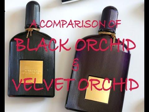 d5bda8699 Tom Ford Velvet Orchid and Black Orchid - comparison. Black Orchid is  UNISEX!