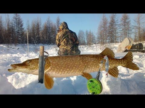 Рыбачим в Якутии и отдыхаем на рыбалке! Якутия Yakutia