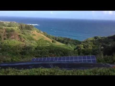 Maui wind