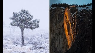 Yosemite Firefall and Joshua Tree Snowstorm 24 Hour Road Trip
