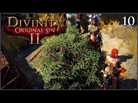 Divinity Original Sin  Thief Build