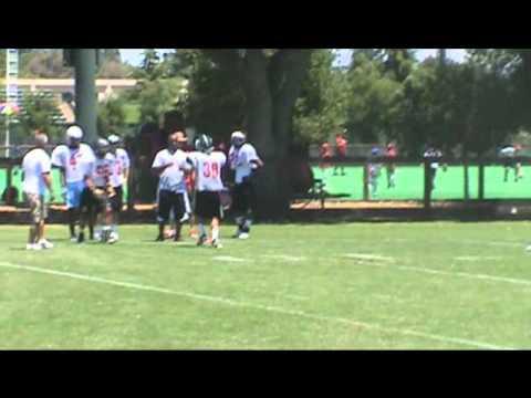 Hashim Boyd Stanford Camp Highlights