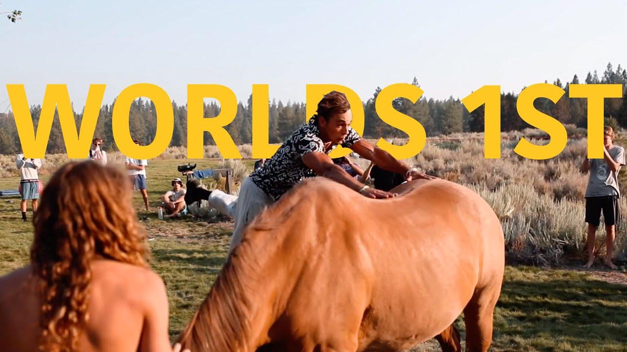 BEST FRIEND KONG GAINERS A HORSE