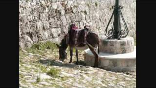 Montenegro Music and Images