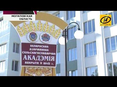 белорусская знакомства