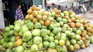 Cô gái nông thôn bán dừa siêu đẳng | VTC