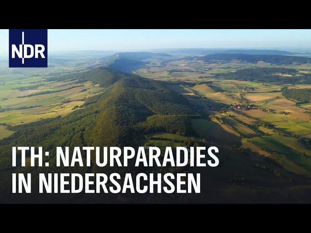 Hoch hinaus - Erlebnistour im Ith | die nordstory | NDR Doku