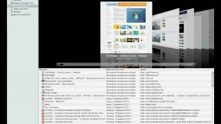 Панель быстрого доступа Safari в Mac OS X 10.6 (28/44)