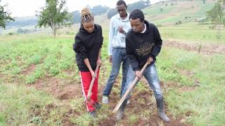 Desagu Trains Rich Karen Girl Kulima Shamba
