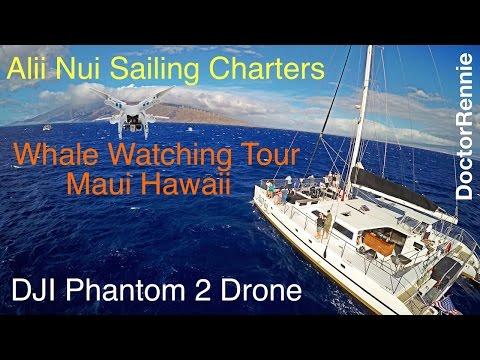 Alii Nui Sailing Charters Whale Watching in Maui Hawaii from DJI Phantom 2