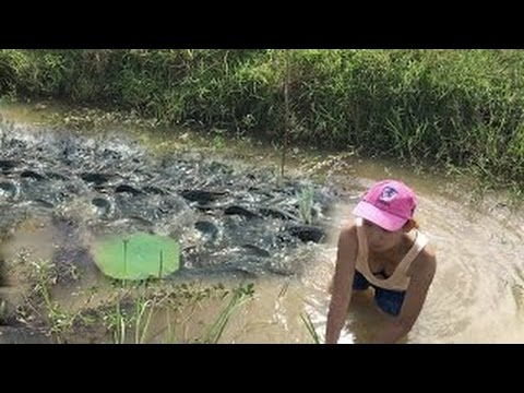 Amazing Net Fishing - Two Women Fishing With Gillnet In Canal - Best Cambodia Net Fishing
