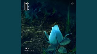 Play Try (feat. RØRY)