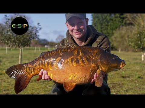 ESP - Kev Hewitt - Bait Fishing At Bluebell