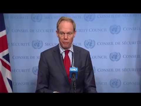 UNSC President Matthew Rycroft (UK) on UNDOF, South Sudan & other matters - Media Stakeout