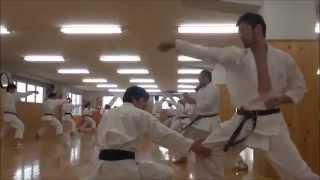 Training at JKA (Japan Karate Association) Honbu Dojo