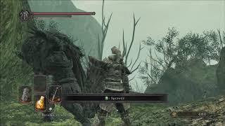 Zagrajmy w Dark Souls 2: Scholar of the First Sin (part 17)
