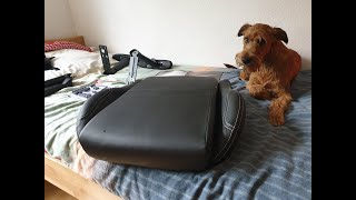 Chair assembly with the helpful assistance of an Irish Terrier :)
