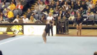 Ursinus College Gymnastics 2013