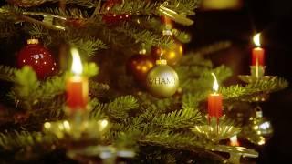 radioeins Weihnachtsbaum