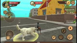 Канал боевой симулятор собаки собака злая крыса щенка носка победили крыс и собак