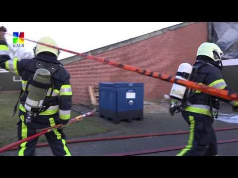 Ruim 1000 varkens komen om bij brand in Mill
