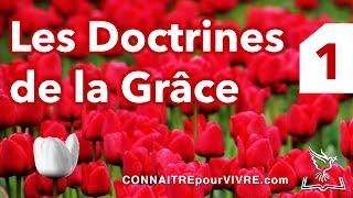 Les Doctrines de la Grâce (Partie 1): La Dépravation Totale