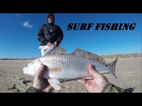 Outer Banks Fishing - Red Drum, Black Drum, Sea Mullet