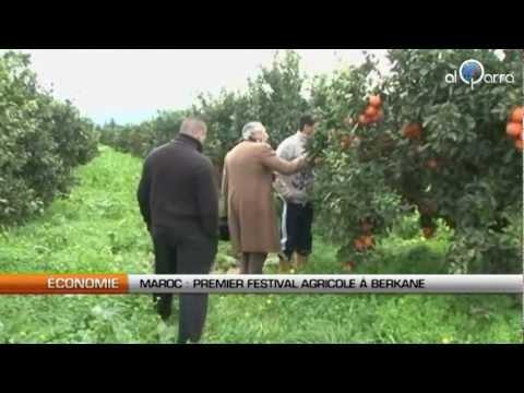 Maroc: Première édition du festival agricole de Berkane